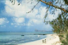 Bain Boeuf Cap Malheureux Beach 1983