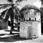 Remains of the Past: The Dovecote of Beau Vallon Estate