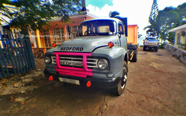 Grey & Pink Bedford Lorry at Bois Des Amourettes Mauritius