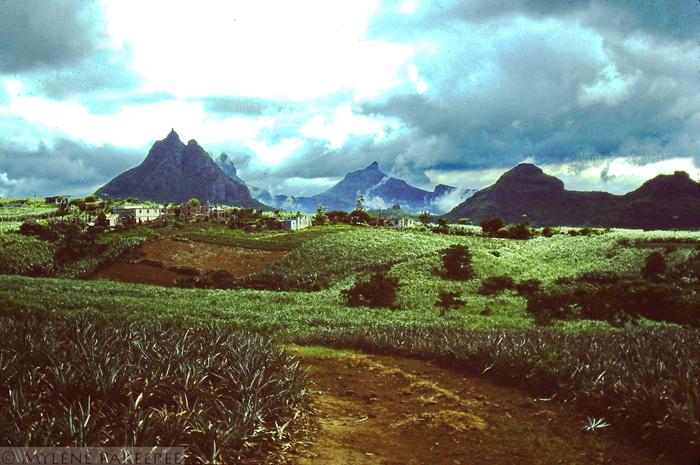 Creve Coeur Village Mauritius 1980s (Courtesy: Mylene Pakeeree)