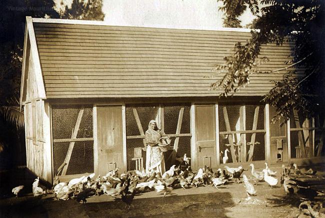 Moka - Eureka Colonial House - Maison Creole - The Poultry - 1890s