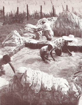 GRNW - Women Washing Aloes Fibres for Gounis Bags in the River