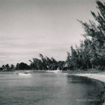 Grand Bay Beach – Unspoilt, untouched and wild – 1960s