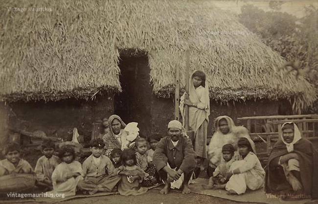 Indian Family Indentured Labourers Vacoas Mauritius
