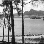 Pointe D'Esny – View over Lion Mountain – 1960s