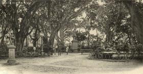 Port Louis - Company Garden - Jardin de la Compagnie - 1899