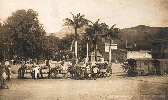 Port Louis - Place D'Armes - Labourdonnais Square - Carioles ready for work - 1900s