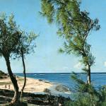 Poste Lafayette Public Beach 1970s