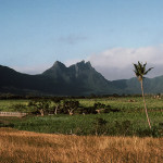 The Beautiful Rempart Mountains viewed from Tamarin