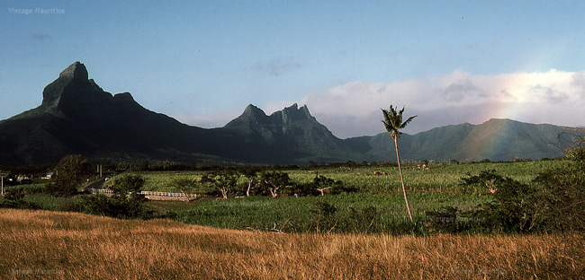Rempart-Mountains-from-tamarin