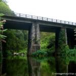 Riviere des Anguilles Bridge
