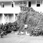 Special Mobile Force Destroying Cannabis Plants found near Port Louis – 1970s