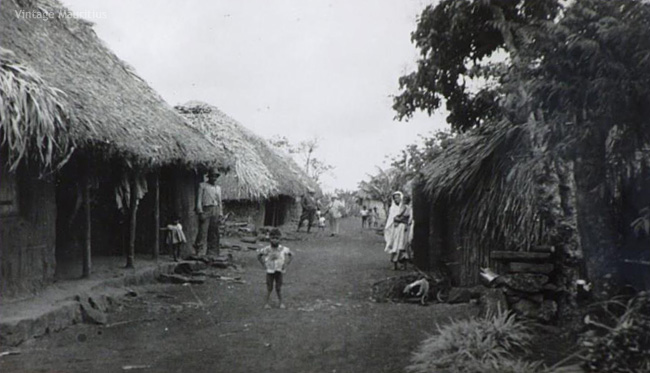 Trianon Sugar Estate - Labourers Camps - 1940s