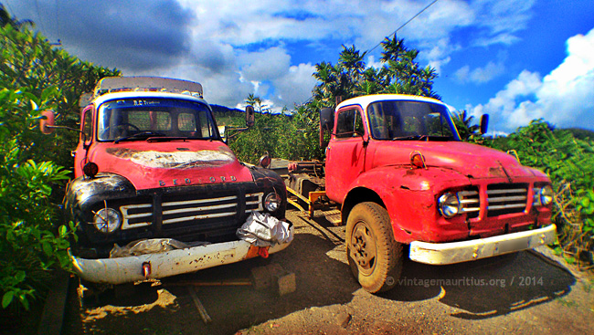 Two Bedford Lorries at Bambous Virieux - Mauritius, under repairs.